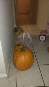 She is a pumpkin thief